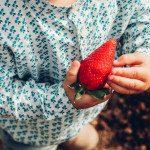 Recoge tus propias fresas